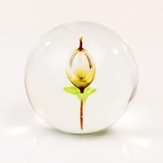 Sphère en verre avec tulipe